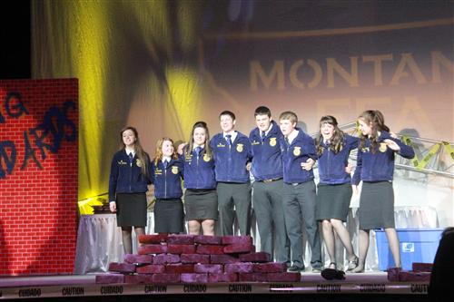 High School FFA / FFA Activities